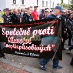 antiziganistische-demonstration-09