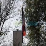 Die Schwarz-Weiß-Rote Fahne verrät was sich hinter dem Zaun verbirgt