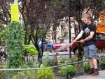 Demnächst auch in Dresden? Guerilla Gardening in Berlin (Quelle: flickr.com/photos/abuaiman/)