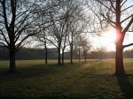 Blick in den Alaunpark am frühen Morgen (Quelle: flickr.com/photos/_parrish_/)